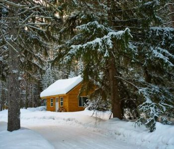 brown-house-near-pine-trees-covered-with-snow-754268